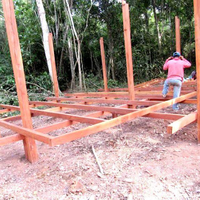 24 038.963 ha de bosques serán custodiados con la construcción de puestos de control