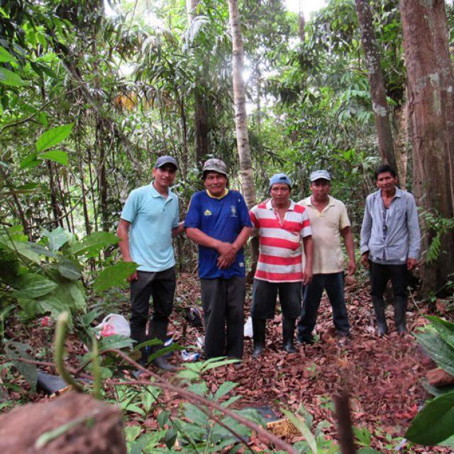 Comunidades vigilan sus bosques