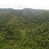 Concesión para Conservación Valle del Biavo